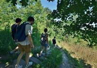 Jumièges au Naturel, randonnée pédestre