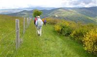 CÉVENNES : Le GR® 70 Chemin de Stevenson