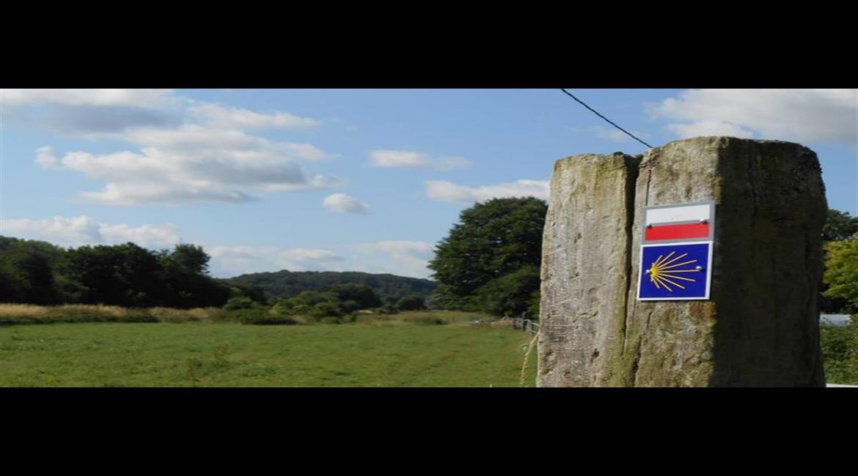 COMPOSTELLE : En famille, du Puy-en-Velay à Saint-Jacques
