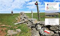COMPOSTELLE : Guide pratique du GR® 65 Le Puy-Livinhac