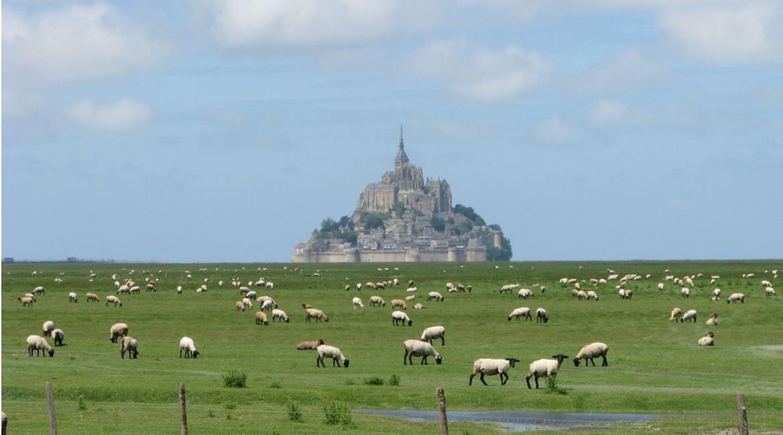 GR® 223:  Sur la côte normande, de Granville au Mont-Saint-Michel